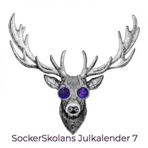 Julkalender 7 december