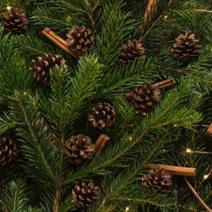 SockerSkolans Julkalender 11 december