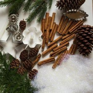 SockerSkolans Julkalender 10 december