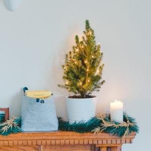 SockerSkolans Julkalender 13 december